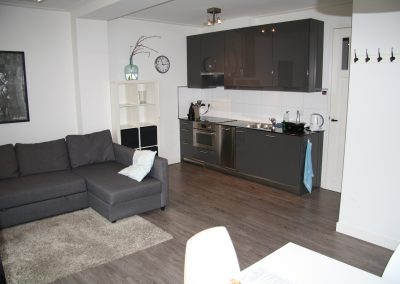 living room and kitchen in serviced apartment utrecht